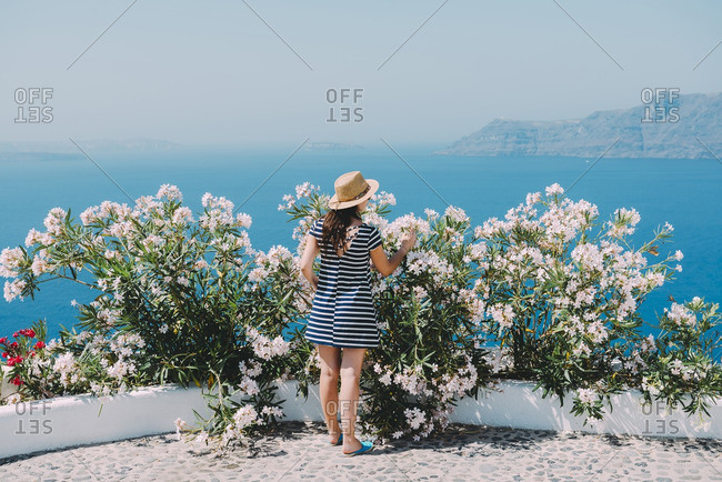 Rear view of woman looking at flower while standing on patio against clear sky