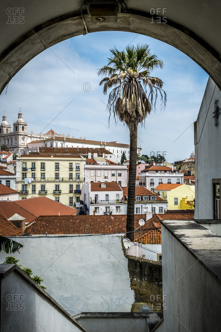 Lisbon, Portugal - April 16, 2014: Lisbon city with palm tree surrounded by red roofed houses
