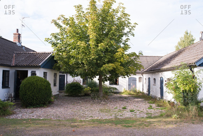 Fruit tree in courtyard of rustic stucco cottages