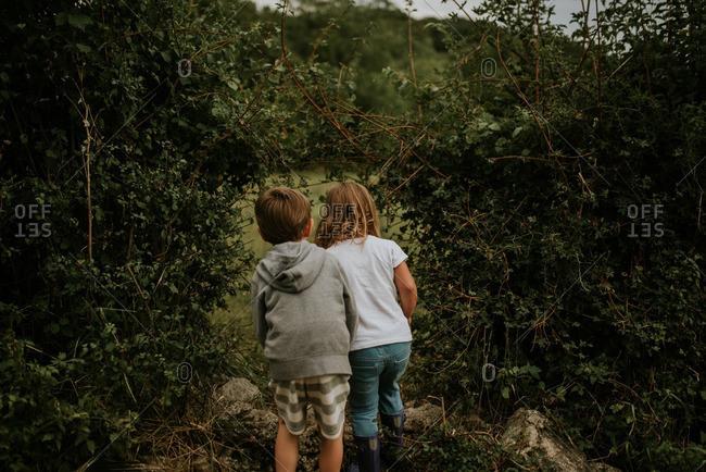 Children looking through opening in vines