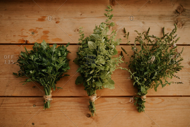 Herbs on a wooden background