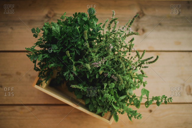 Herbs in a wooden box