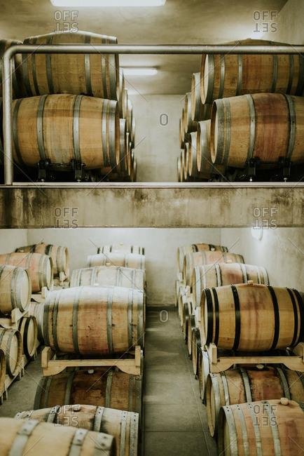 Wine barrels aging in storage