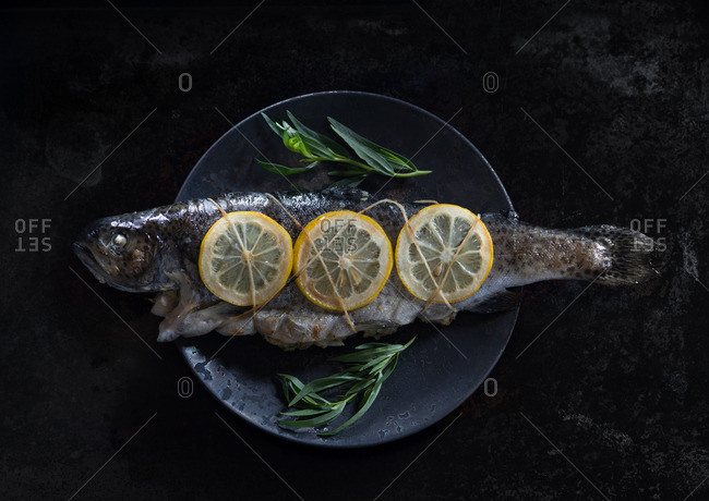 Grilled trout tied with lemon slices
