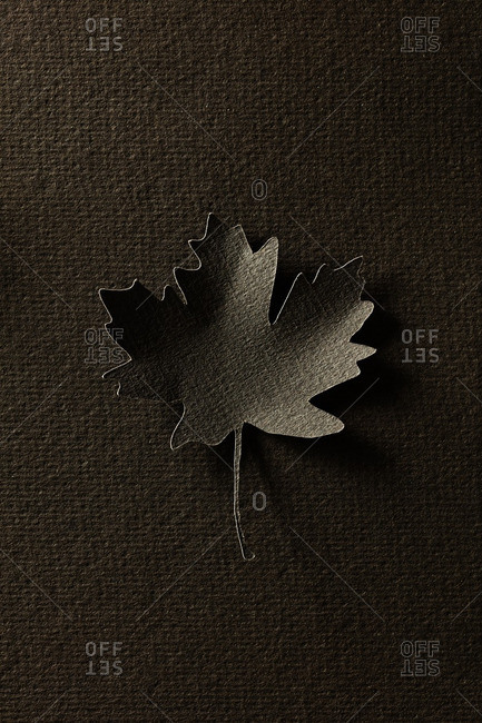 Paper cutout of a single brown maple leaf
