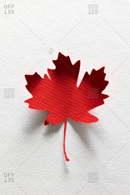 Paper cutout of a single red maple leaf