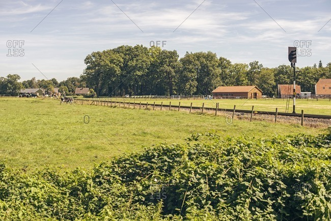 Railway through a meadow in the countryside in the Netherlands