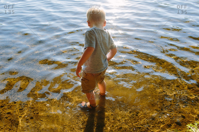 Little boy wading in the water at the edge of a lake