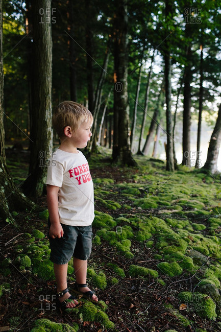 Little boy standing in a forested natural area looking away
