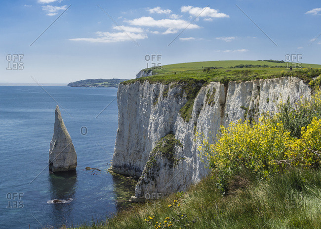 The Chalk cliffs of Ballard Down with The Pinnacles Stack in Swanage Bay, near Handfast Point, Isle of Purbeck, Jurassic Coast, UNESCO World Heritage Site, Dorset, England, United Kingdom, Europe