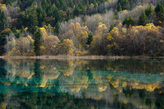 Jiuzhaigou on the edge of the Tibetan Plateau, known for its waterfalls and  lakes, located in the north of Sichuan Province, China, Asia