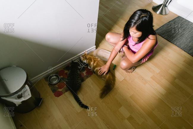Girl petting two cats while they eat