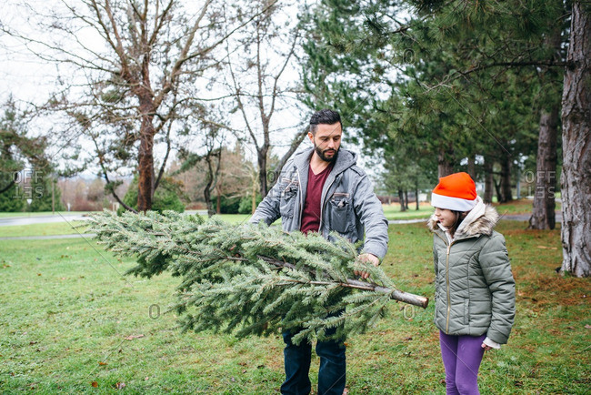 Father and daughter carrying a fresh cut Christmas tree