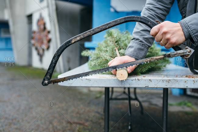 Man sawing the trunk of a Christmas tree