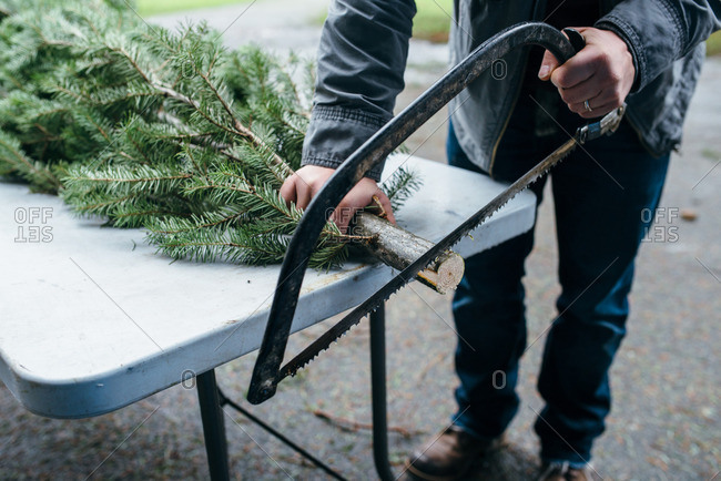 Man using a handsaw to cut the end from a Christmas tree