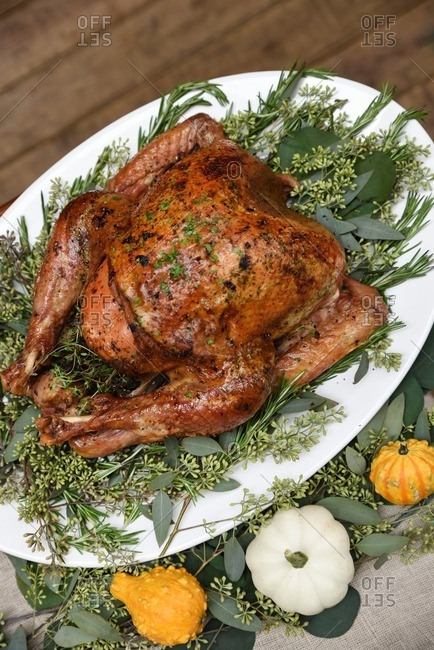 Roasted turkey on a serving platter with fresh greenery and autumn squash
