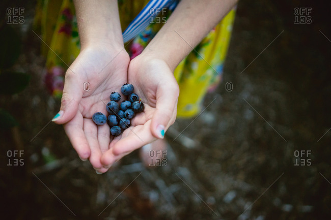 Girl with handful of blueberries