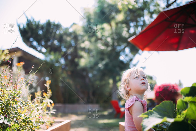Little blonde girl standing outside looking up