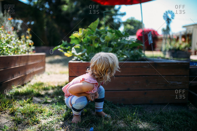 Little blonde girl hiding behind a raised garden