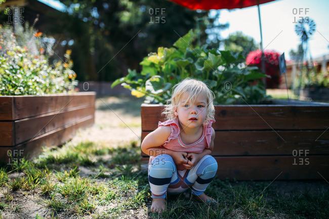 Little blonde girl sitting by a raised garden