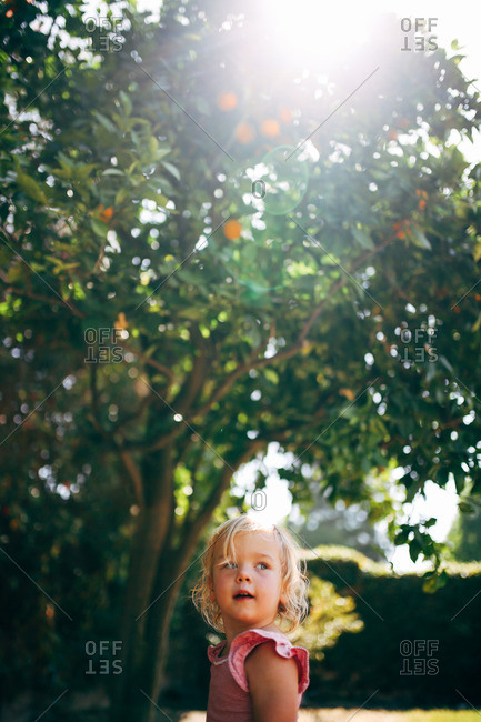 Little blonde girl standing under an orange tree