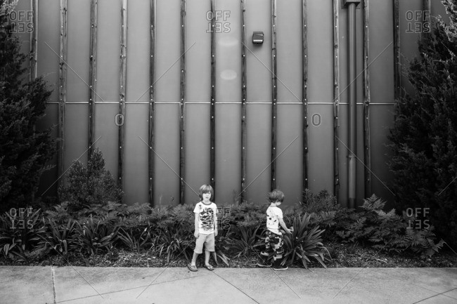 Fraternal twin boys standing by plants outdoors