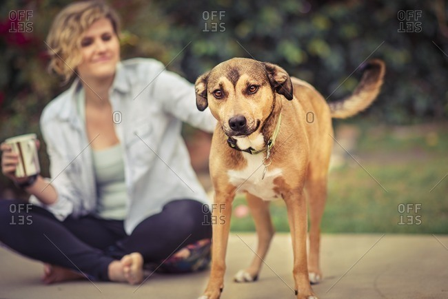 Woman sitting on ground petting a brown dog
