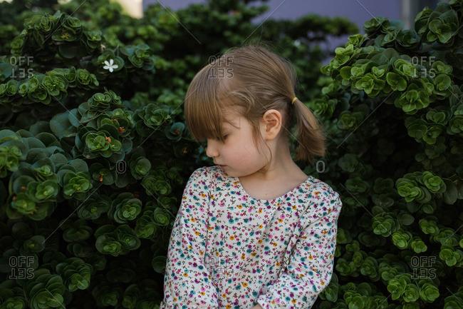 Portrait of toddler girl looking over shoulder in bushes
