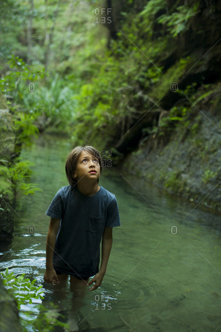 Boy wading in stream, looking up in awe