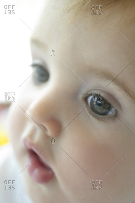 Baby, close-up portrait - Offset Collection