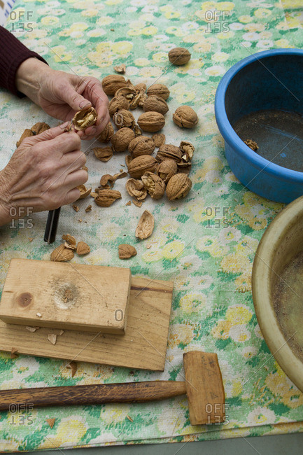 Woman shelling walnuts, cropped