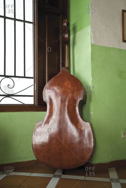 Double bass leaned against window