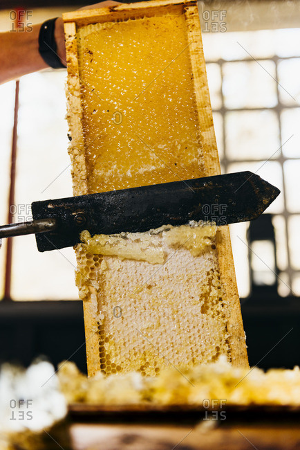 Scraping the top layer off honeycomb with heated knife during harvesting process