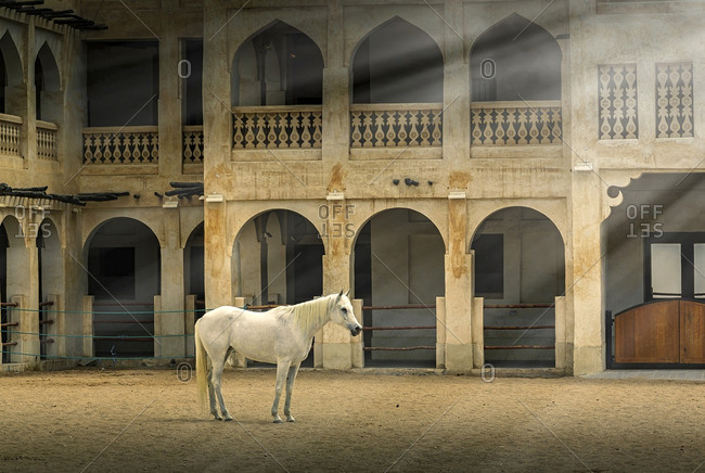 Horse standing in sunbeams near ornate building