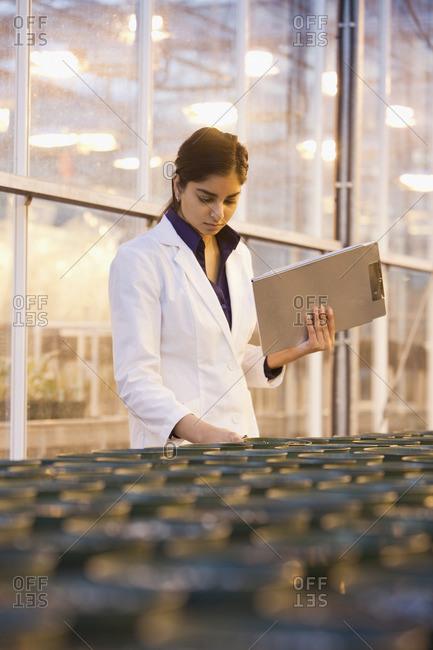 Indian scientist working in laboratory