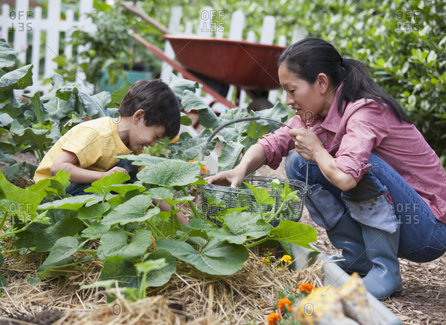 Asian mother and son gardening