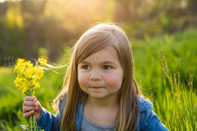 Close up of a little girl holding yellow flowers at sunset