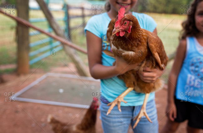 Little girl holding brown rooster
