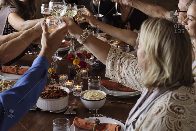 Family toasting with wine at a Thanksgiving dinner