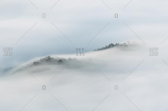 Fog In Tavernet, Barcelona, Spain