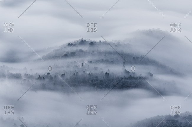 Forest covered hill surrounded in fog In Tavernet, Barcelona, Spain