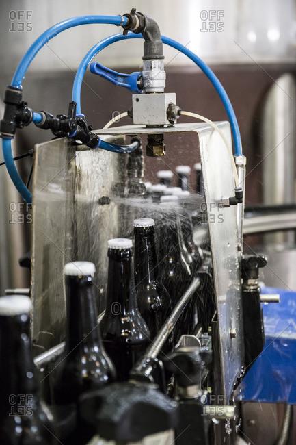 Beer bottles on conveyor belt in bottling plant