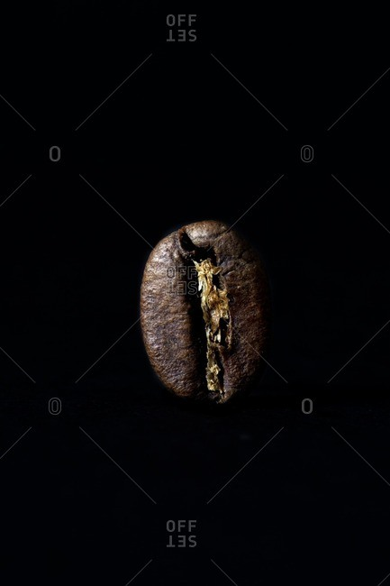 Close-up of a single coffee bean on black background
