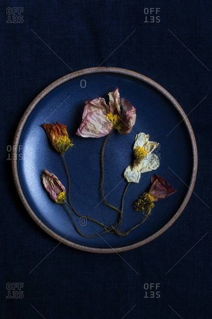 Dried flowers in a blue pottery plate
