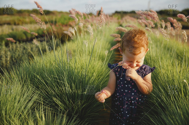 Girl in farm field giggling with plant