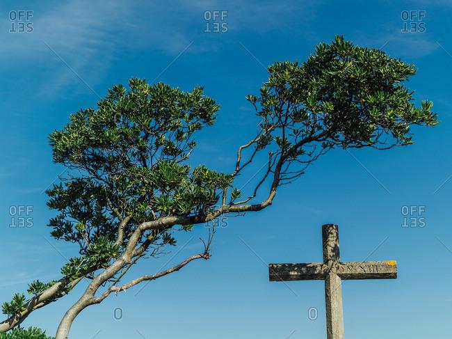 Cross under a tree branch