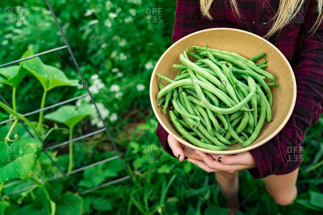 Girl holding bowl of fresh picked green beans