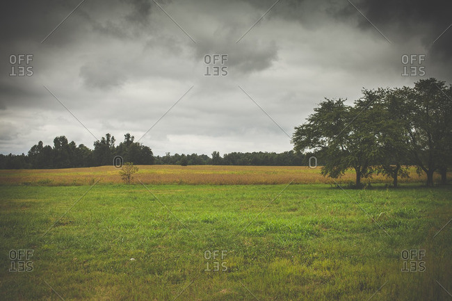 Storm clouds over an empty field of grass