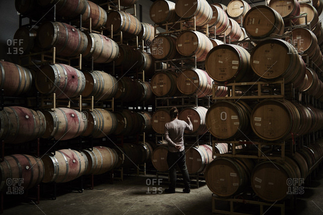 Sonoma, California - August 24, 2016: Vintner inspecting oak barrels at Kutch Wines in Sonoma, California
