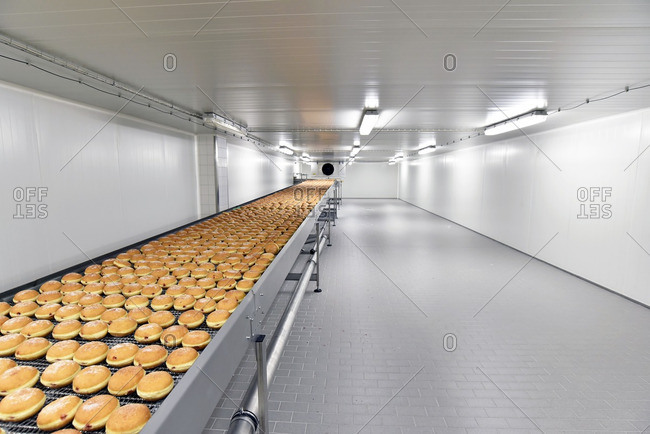 Production line in a baking factory with Berliners
